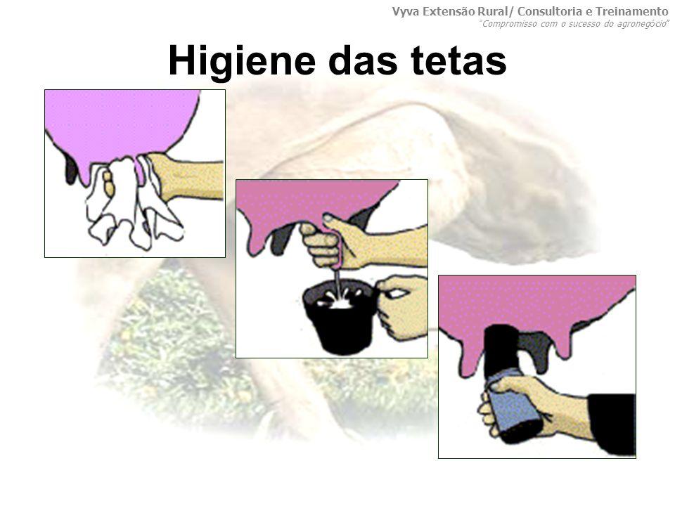 Higiene das tetas Vyva Extensão Rural/ Consultoria e Treinamento