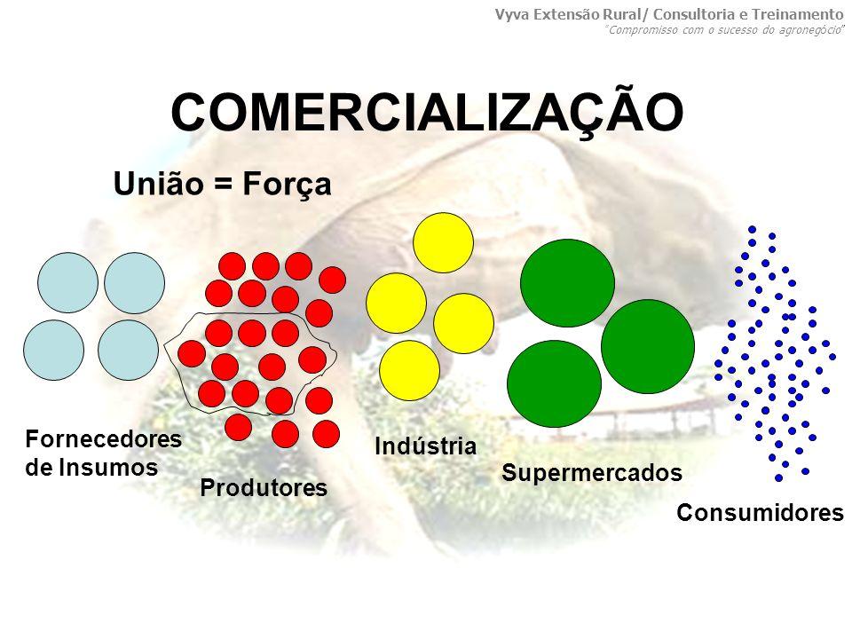 COMERCIALIZAÇÃO União = Força Fornecedores de Insumos Indústria