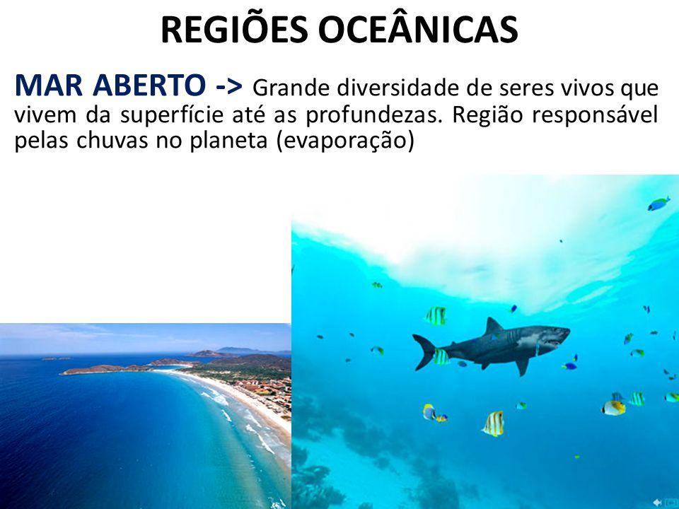 REGIÕES OCEÂNICAS