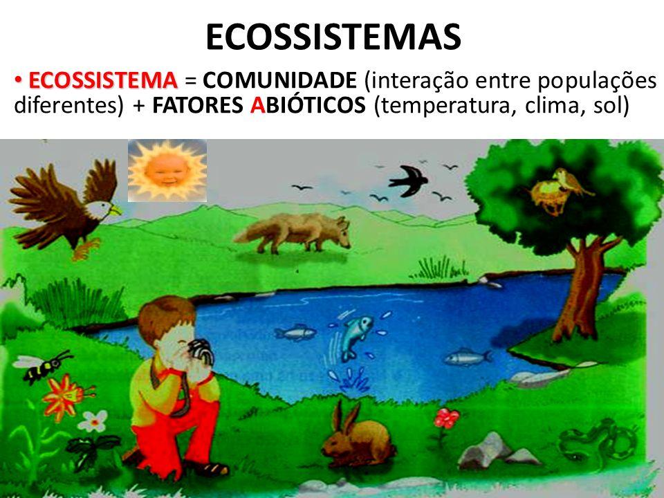 ECOSSISTEMAS ECOSSISTEMA = COMUNIDADE (interação entre populações diferentes) + FATORES ABIÓTICOS (temperatura, clima, sol)
