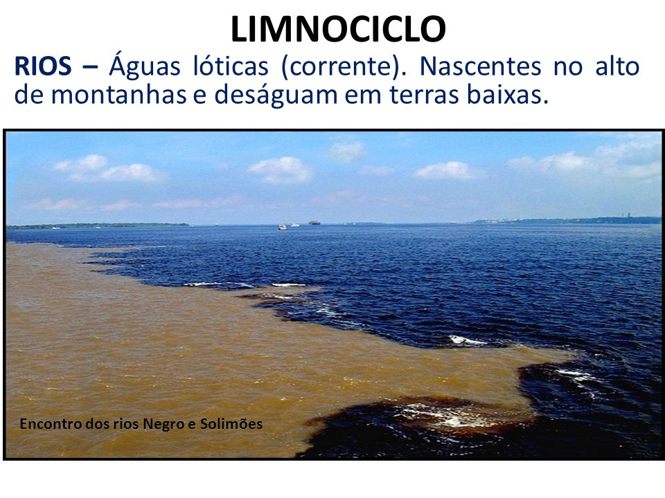 LIMNOCICLO RIOS – Águas lóticas (corrente). Nascentes no alto de montanhas e deságuam em terras baixas.