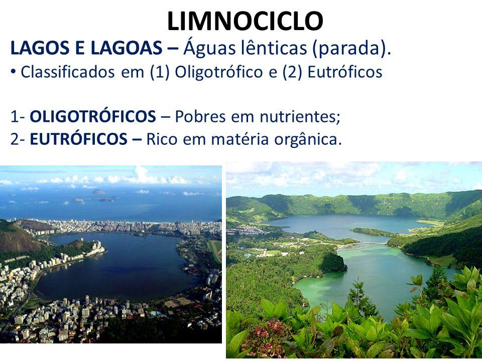 LIMNOCICLO LAGOS E LAGOAS – Águas lênticas (parada).