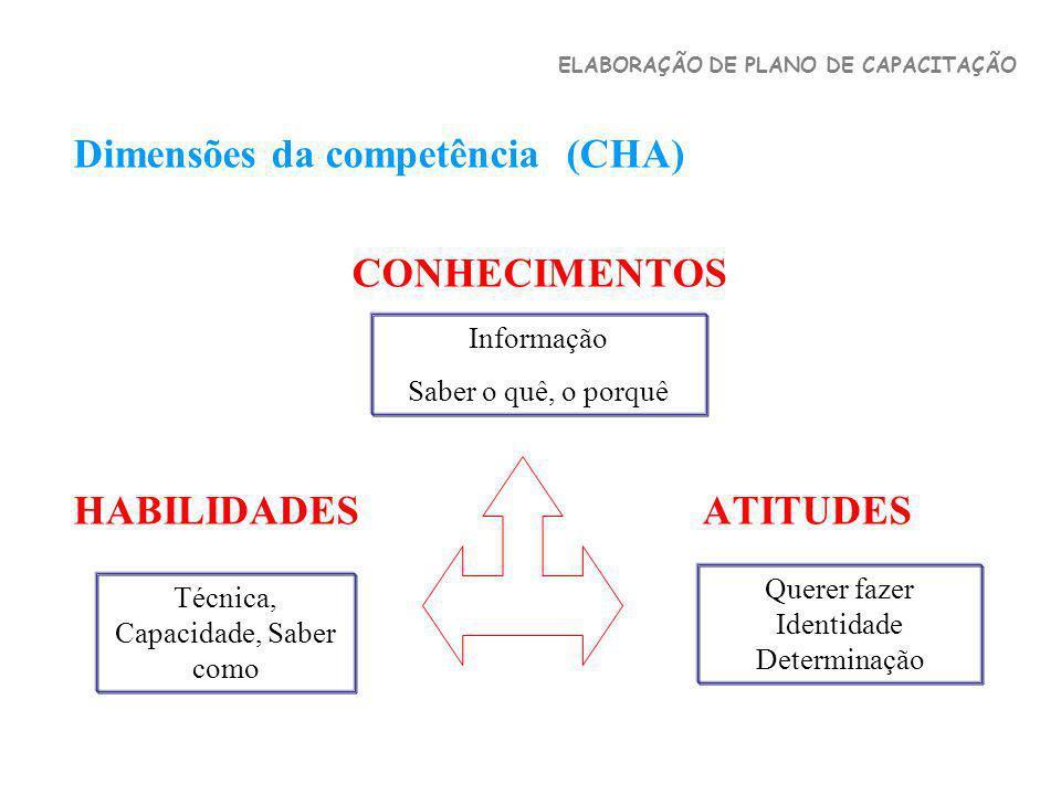 Dimensões da competência (CHA) CONHECIMENTOS