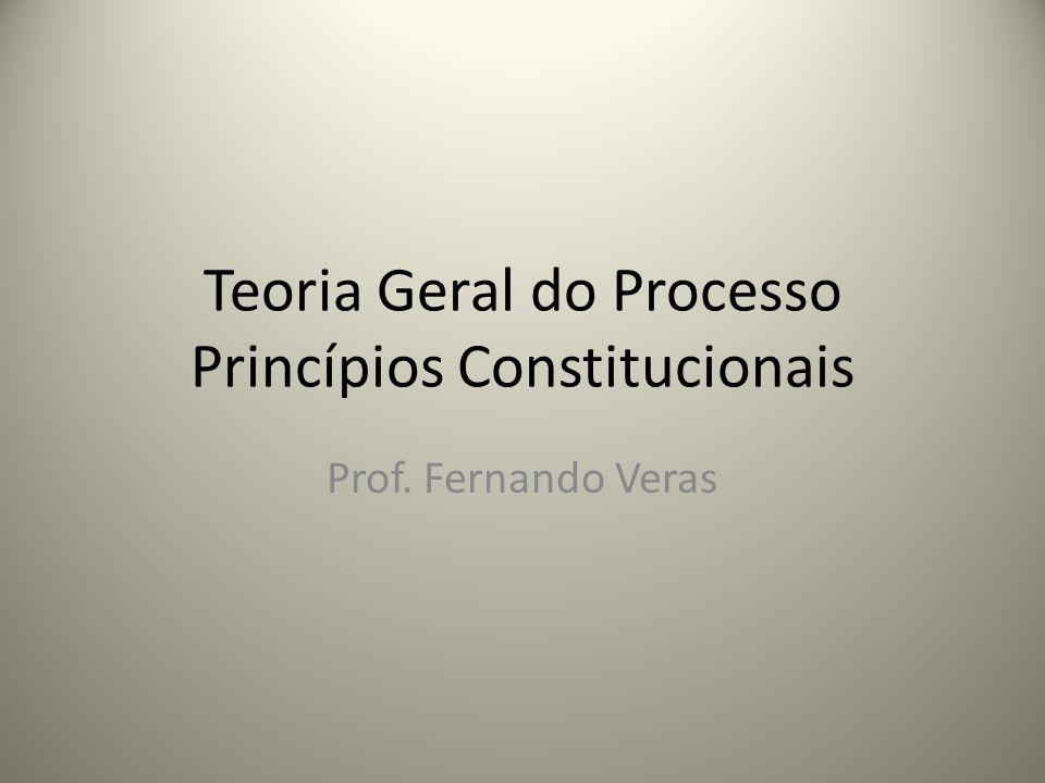 Teoria Geral do Processo Princípios Constitucionais