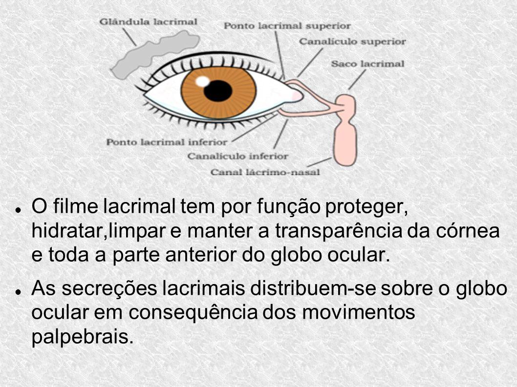 O filme lacrimal tem por função proteger, hidratar,limpar e manter a transparência da córnea e toda a parte anterior do globo ocular.