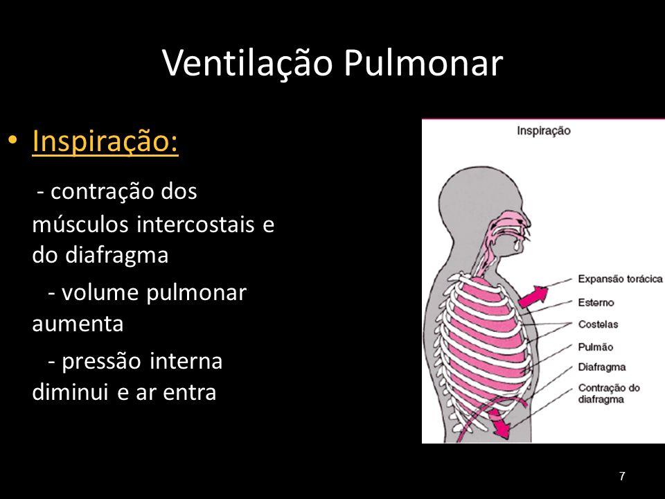 Ventilação Pulmonar Inspiração: