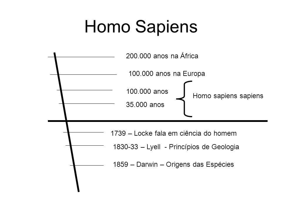 Homo Sapiens 200.000 anos na África 100.000 anos na Europa