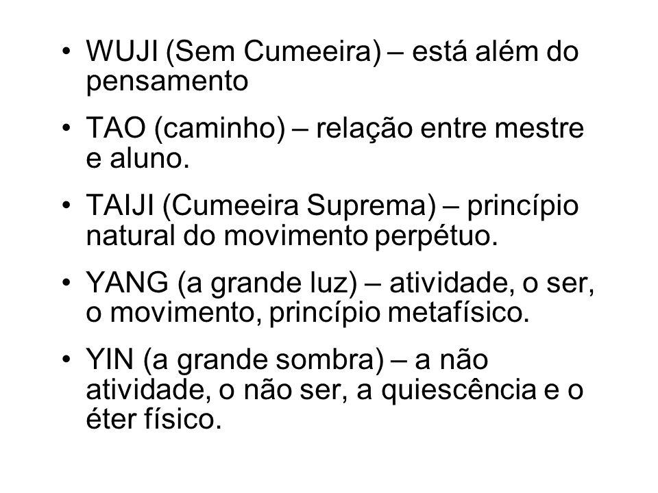 WUJI (Sem Cumeeira) – está além do pensamento
