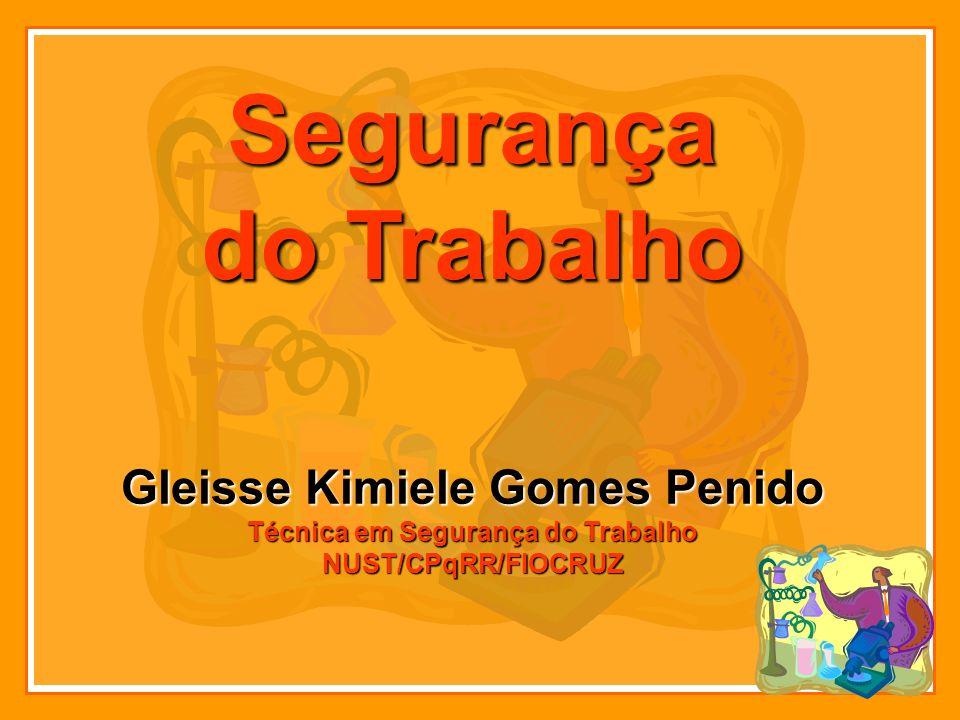 Gleisse Kimiele Gomes Penido Técnica em Segurança do Trabalho