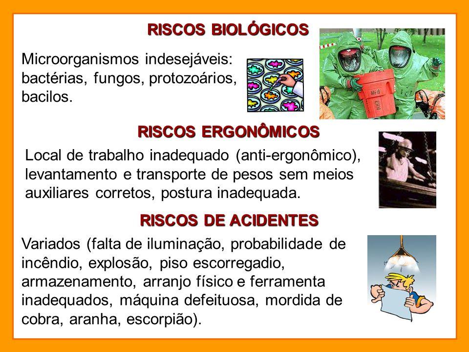 RISCOS BIOLÓGICOS Microorganismos indesejáveis: bactérias, fungos, protozoários, bacilos. RISCOS ERGONÔMICOS.