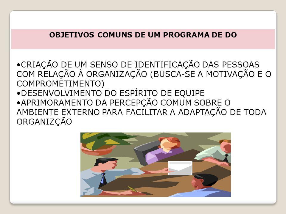 OBJETIVOS COMUNS DE UM PROGRAMA DE DO