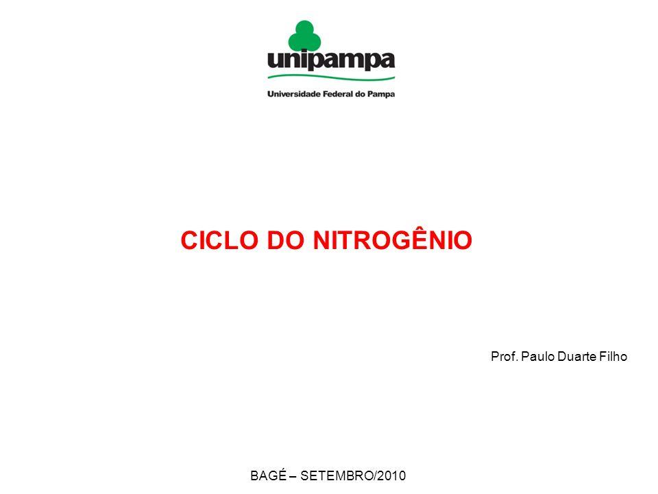 CICLO DO NITROGÊNIO Prof. Paulo Duarte Filho BAGÉ – SETEMBRO/2010