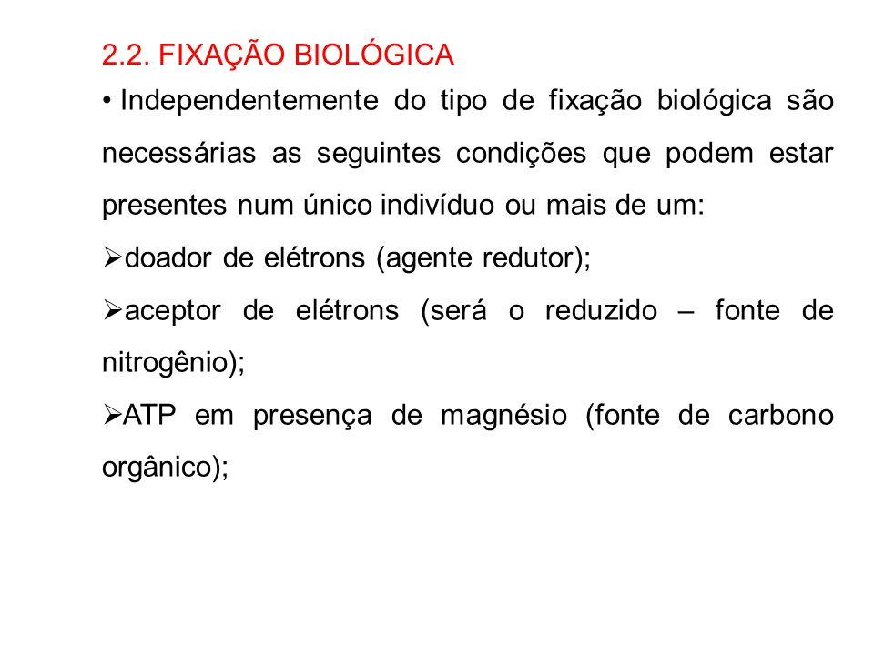 2.2. FIXAÇÃO BIOLÓGICA