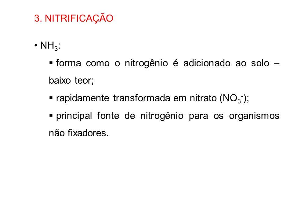 3. NITRIFICAÇÃO NH3: forma como o nitrogênio é adicionado ao solo – baixo teor; rapidamente transformada em nitrato (NO3-);