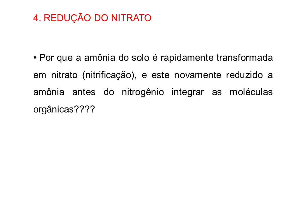 4. REDUÇÃO DO NITRATO