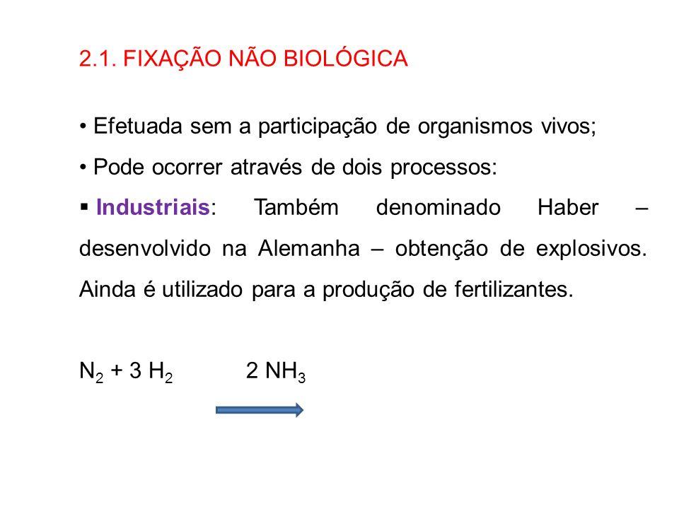 2.1. FIXAÇÃO NÃO BIOLÓGICAEfetuada sem a participação de organismos vivos; Pode ocorrer através de dois processos: