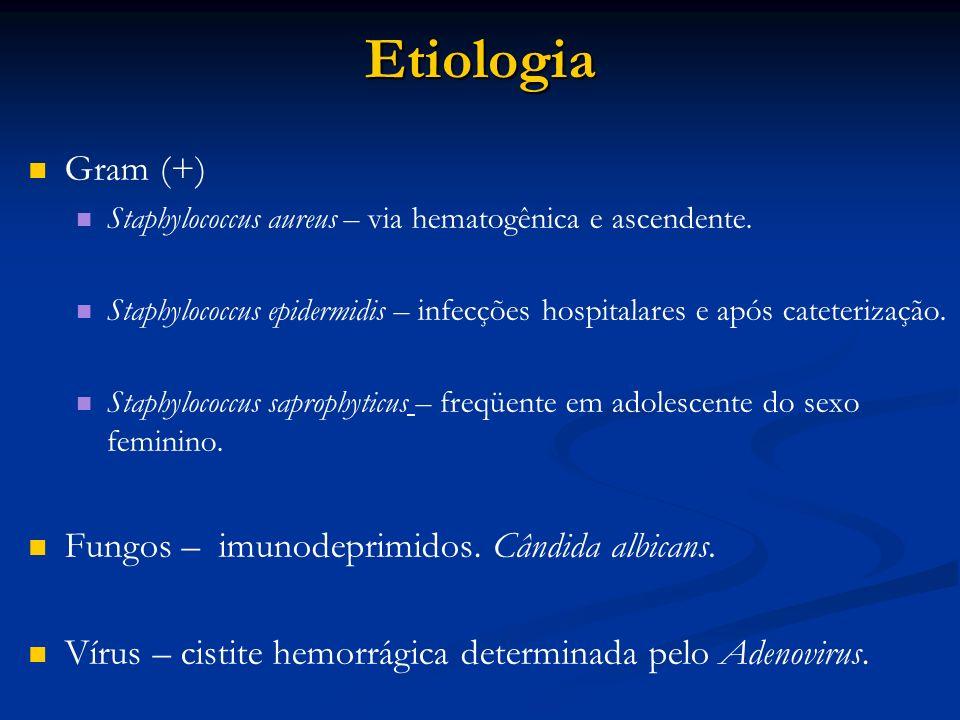 Etiologia Gram (+) Fungos – imunodeprimidos. Cândida albicans.