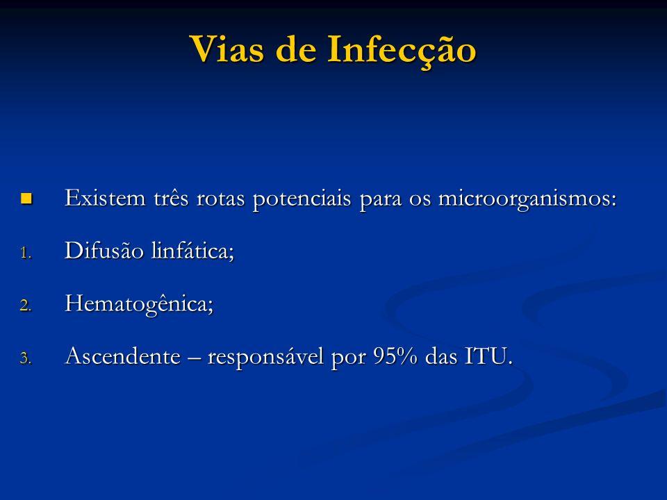 Vias de Infecção Existem três rotas potenciais para os microorganismos: Difusão linfática; Hematogênica;