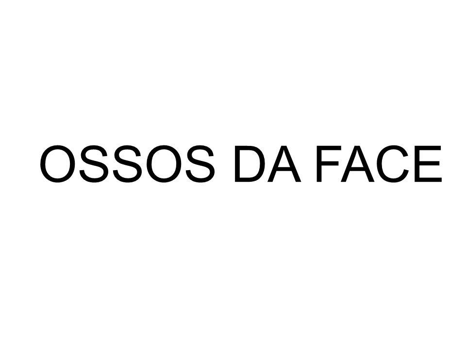 OSSOS DA FACE