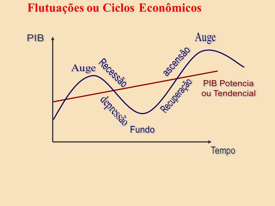Flutuações ou Ciclos Econômicos