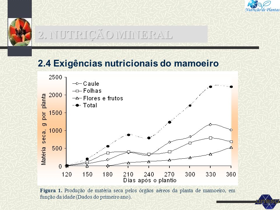 2. NUTRIÇÃO MINERAL 2.4 Exigências nutricionais do mamoeiro