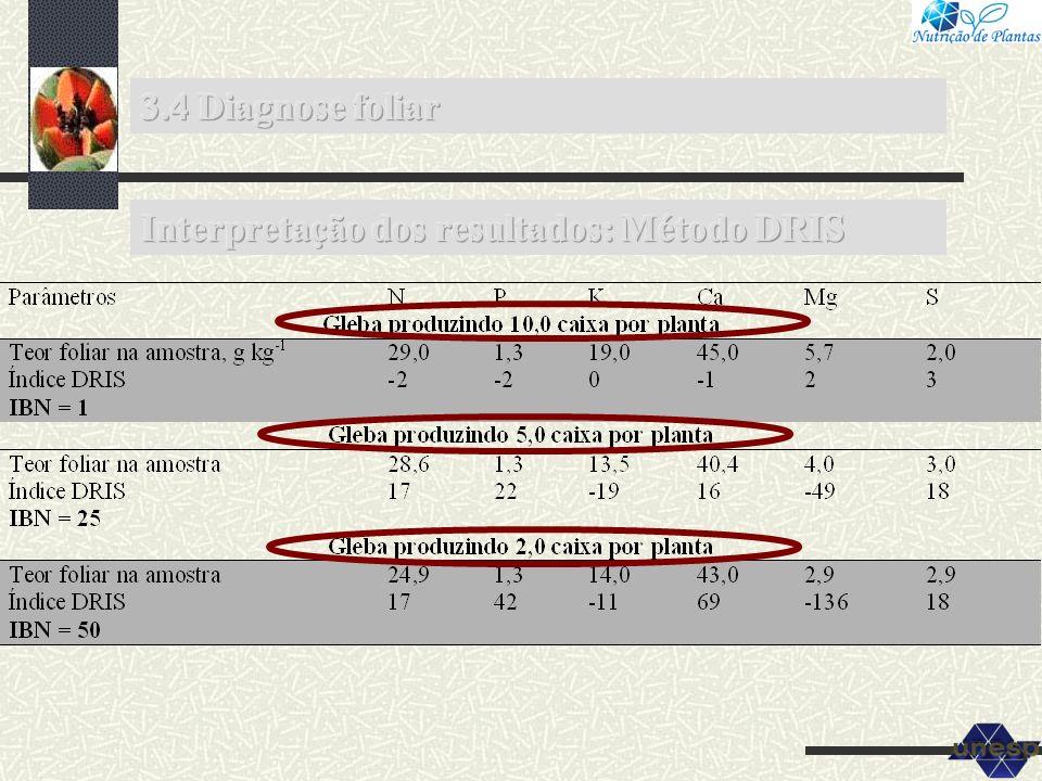 3.4 Diagnose foliar Interpretação dos resultados: Método DRIS