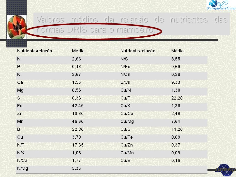 Valores médios da relação de nutrientes das normas DRIS para o mamoeiro.