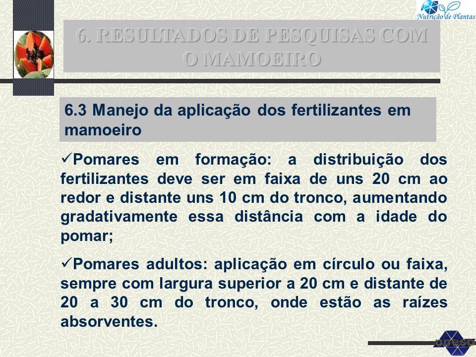 6. RESULTADOS DE PESQUISAS COM O MAMOEIRO