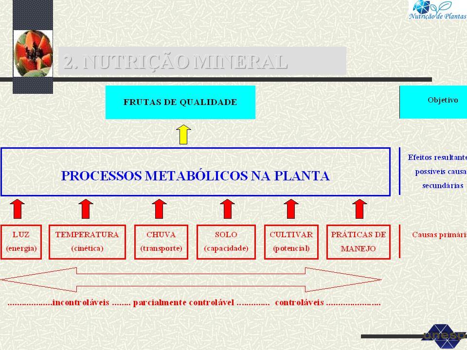 2. NUTRIÇÃO MINERAL