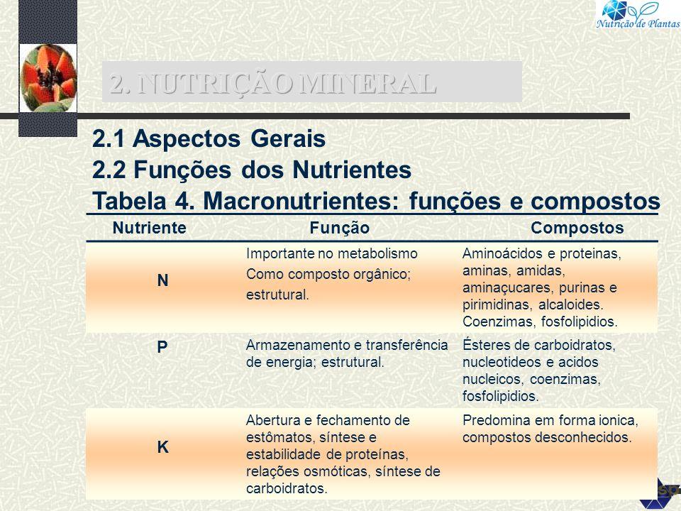 2. NUTRIÇÃO MINERAL 2.1 Aspectos Gerais 2.2 Funções dos Nutrientes