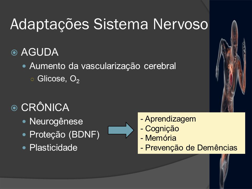 Adaptações Sistema Nervoso