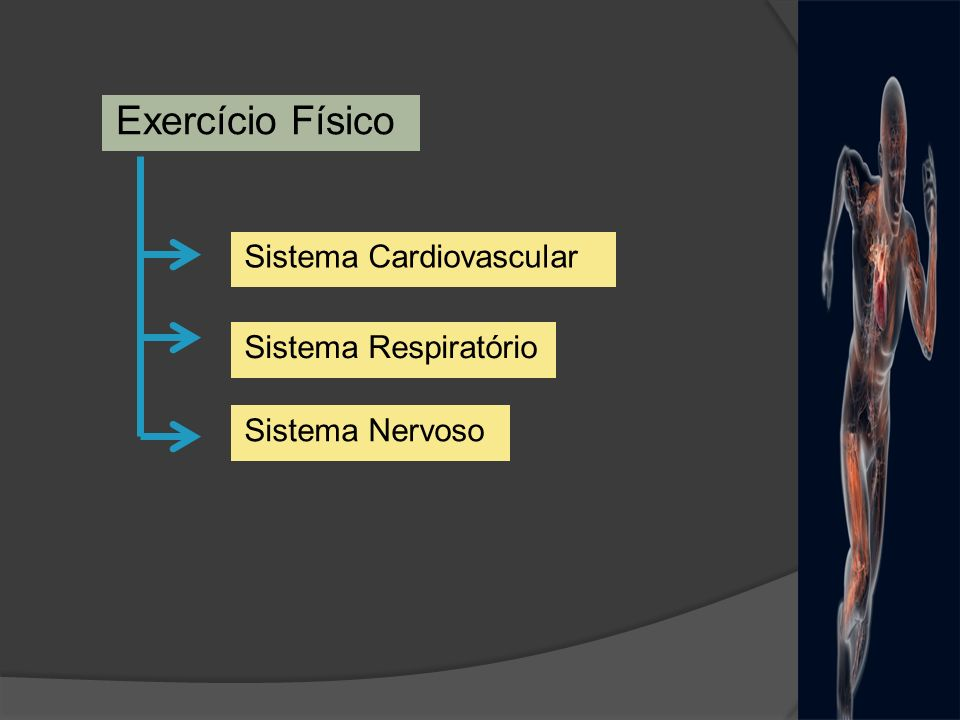Exercício Físico Sistema Cardiovascular Sistema Respiratório