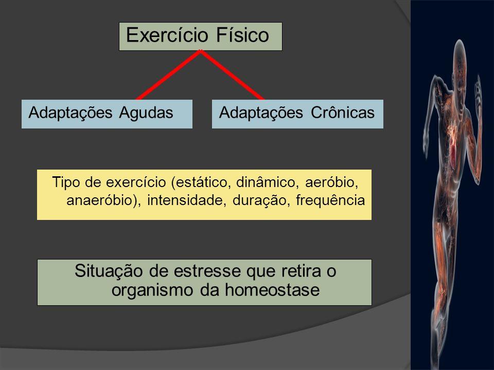 Situação de estresse que retira o organismo da homeostase