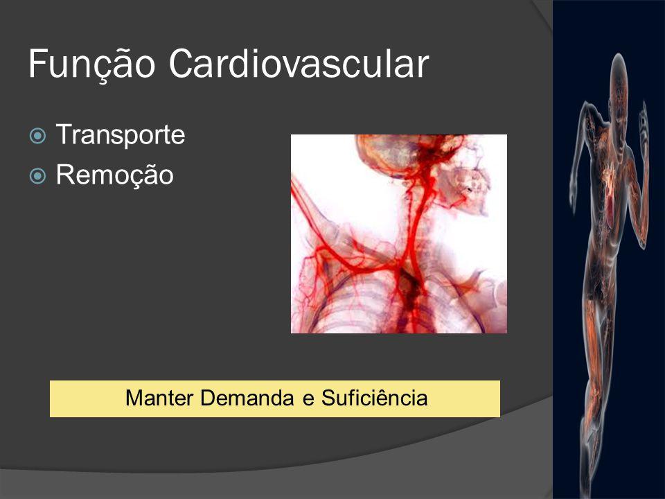 Função Cardiovascular