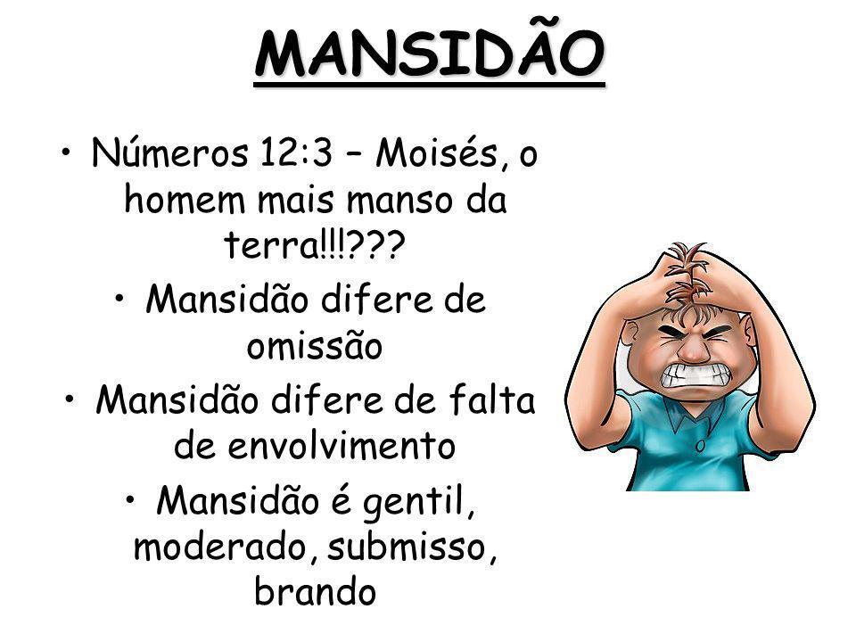 MANSIDÃO Números 12:3 – Moisés, o homem mais manso da terra!!!