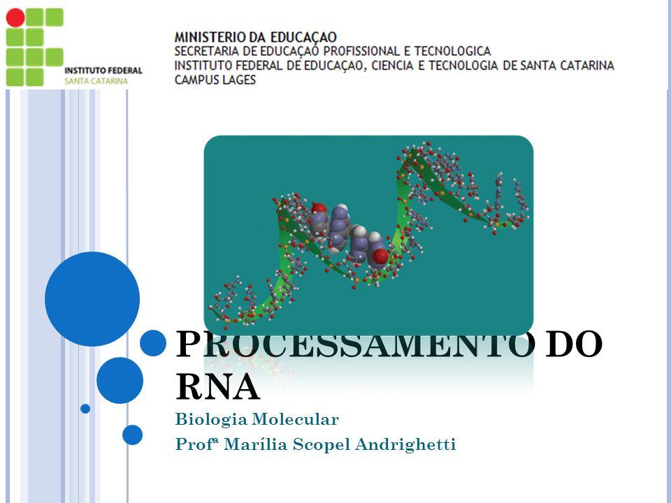 PROCESSAMENTO DO RNA Biologia Molecular