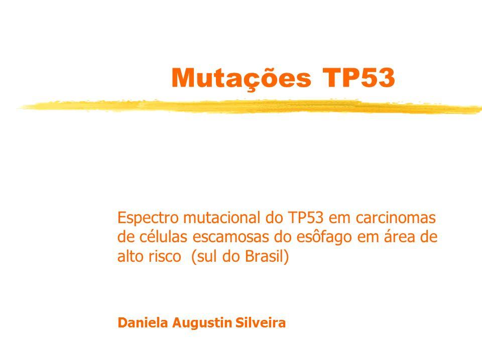 Mutações TP53 Espectro mutacional do TP53 em carcinomas de células escamosas do esôfago em área de alto risco (sul do Brasil)