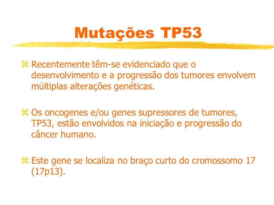 Mutações TP53 Recentemente têm-se evidenciado que o desenvolvimento e a progressão dos tumores envolvem múltiplas alterações genéticas.