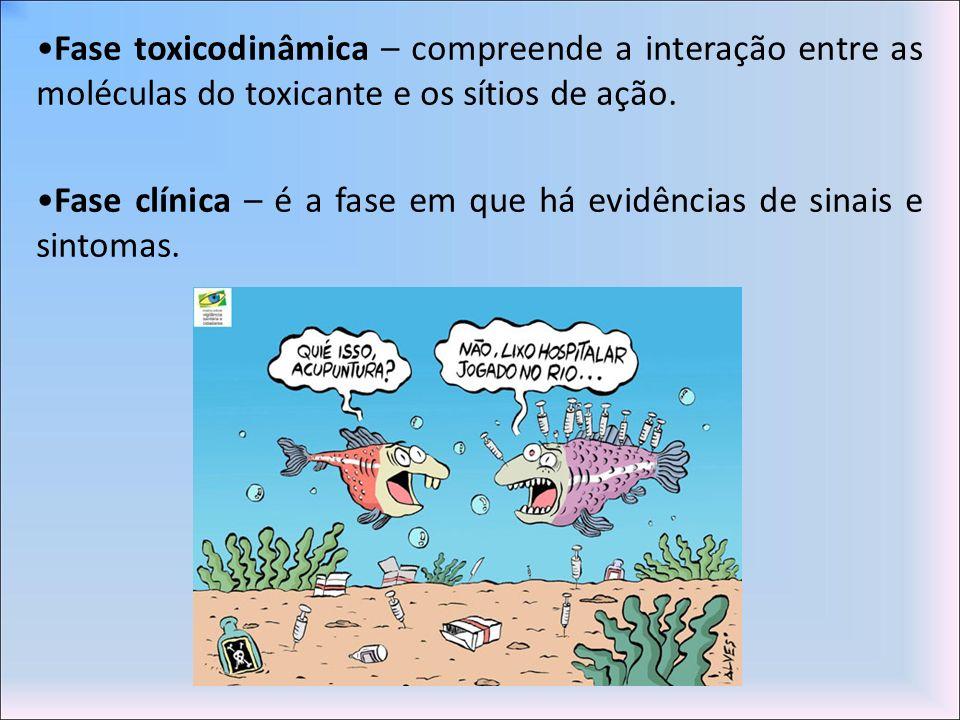 •Fase toxicodinâmica – compreende a interação entre as moléculas do toxicante e os sítios de ação.
