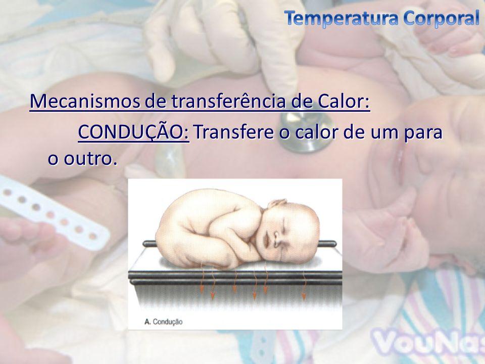 Temperatura Corporal Mecanismos de transferência de Calor: CONDUÇÃO: Transfere o calor de um para o outro.