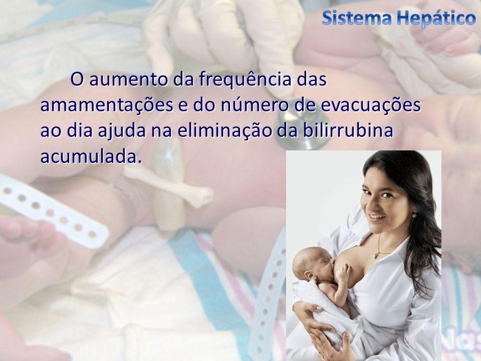 Sistema Hepático O aumento da frequência das amamentações e do número de evacuações ao dia ajuda na eliminação da bilirrubina acumulada.