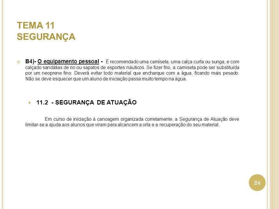 TEMA 11 SEGURANÇA 11.2 - SEGURANÇA DE ATUAÇÃO
