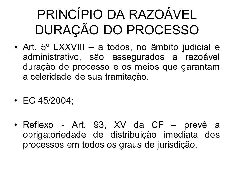 PRINCÍPIO DA RAZOÁVEL DURAÇÃO DO PROCESSO
