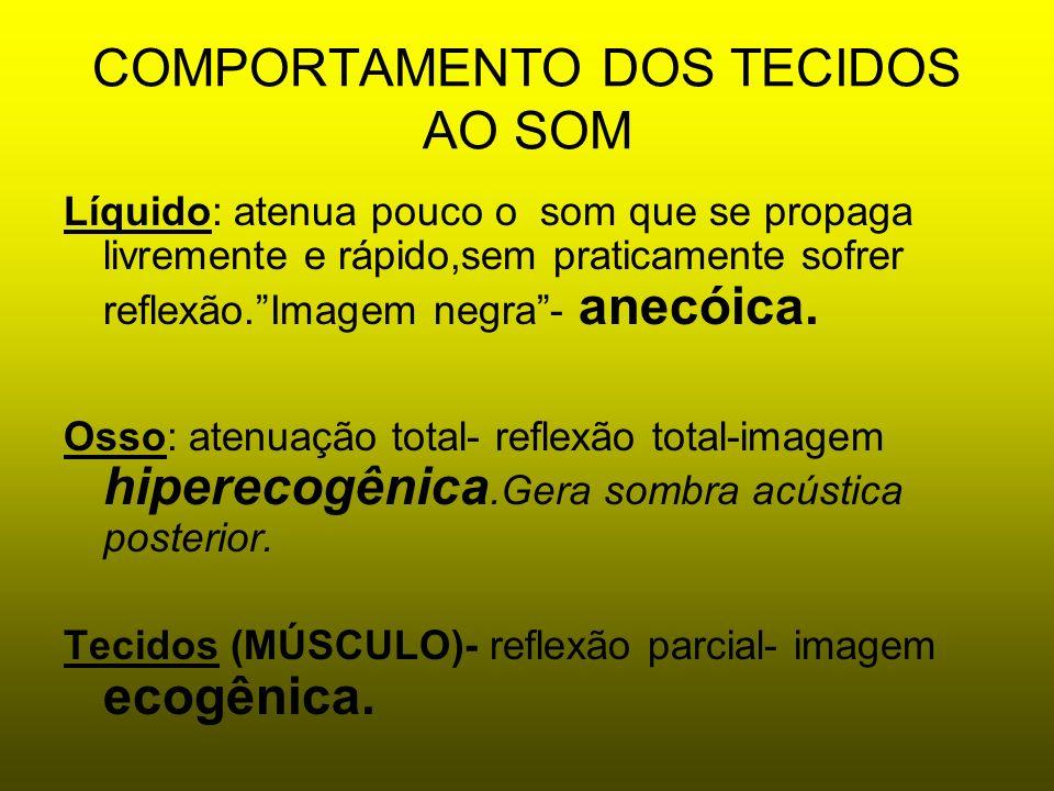 COMPORTAMENTO DOS TECIDOS AO SOM