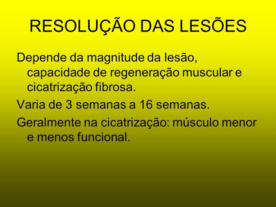 RESOLUÇÃO DAS LESÕESDepende da magnitude da lesão, capacidade de regeneração muscular e cicatrização fibrosa.