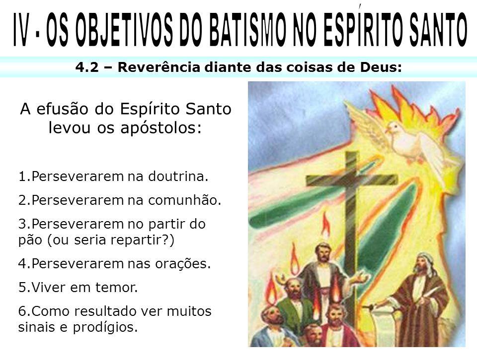 IV - OS OBJETIVOS DO BATISMO NO ESPÍRITO SANTO