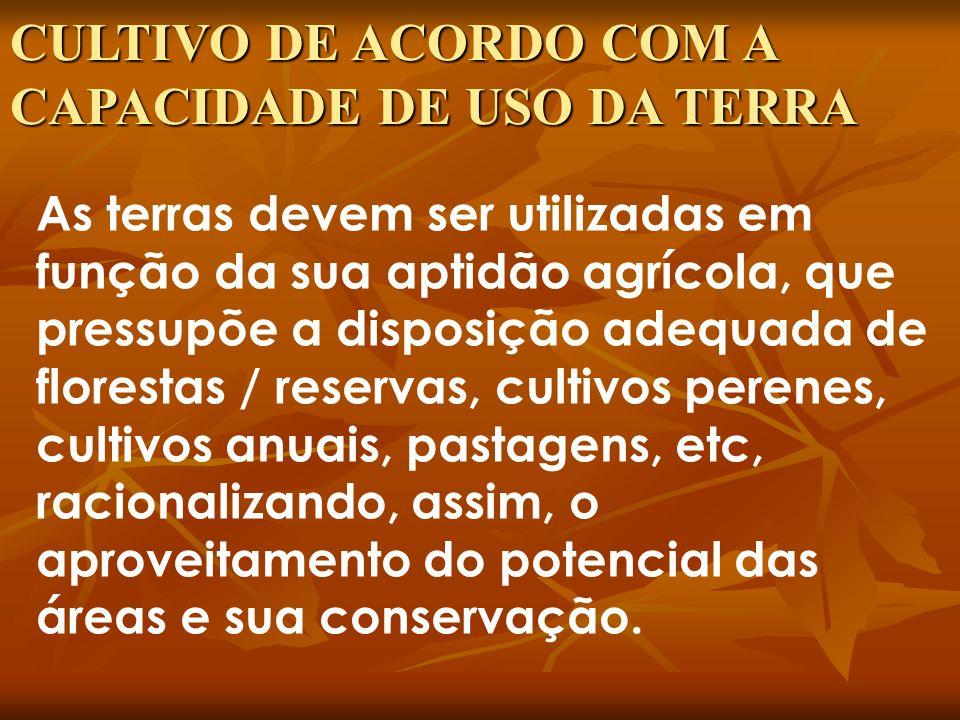CAPACIDADE DE USO DA TERRA