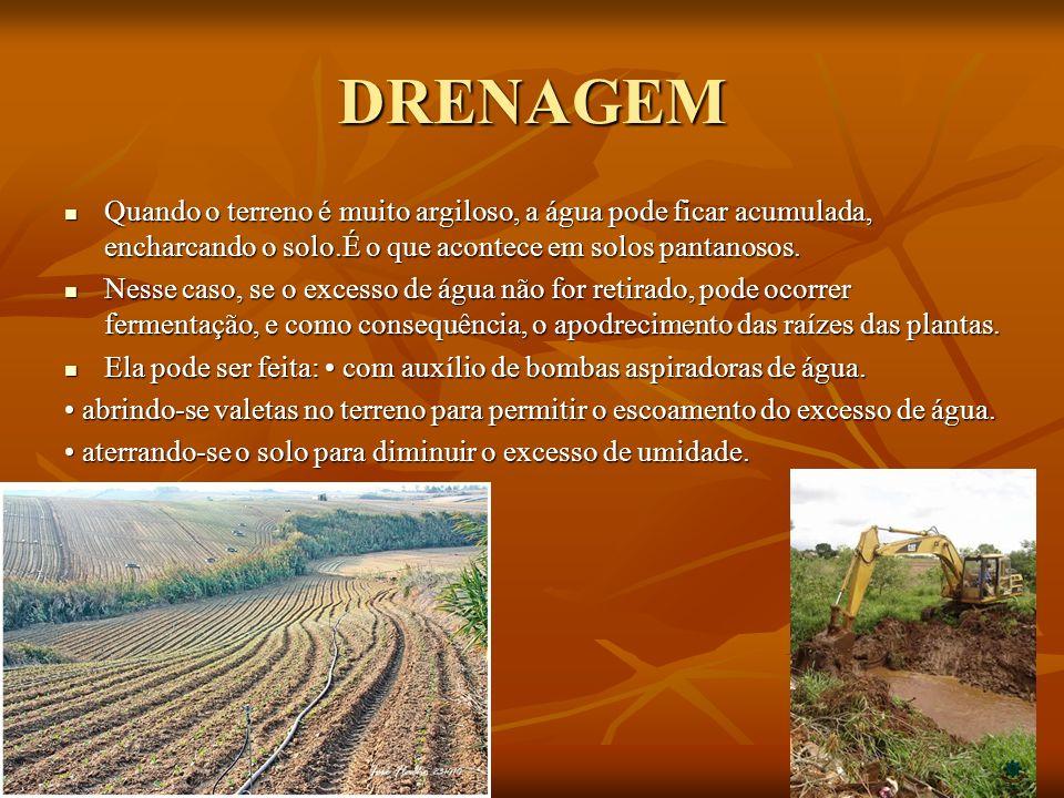 DRENAGEM Quando o terreno é muito argiloso, a água pode ficar acumulada, encharcando o solo.É o que acontece em solos pantanosos.