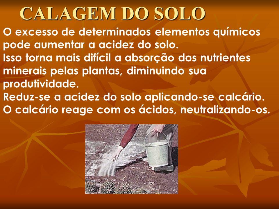 CALAGEM DO SOLO O excesso de determinados elementos químicos pode aumentar a acidez do solo.