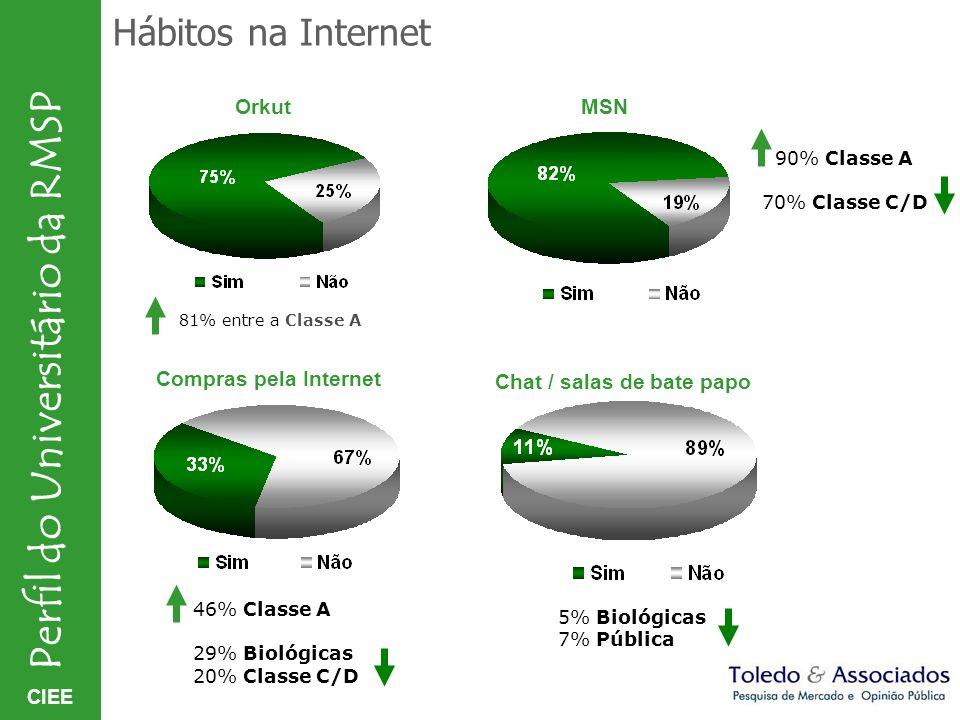 Hábitos na Internet Orkut MSN Compras pela Internet